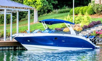 Captained Charter on Brandnew Sea Ray 290 Speedboat in Sag Harbor, New York