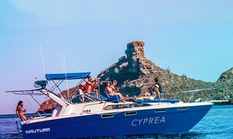 Charter a Motor Yacht in Sonora, Mexico
