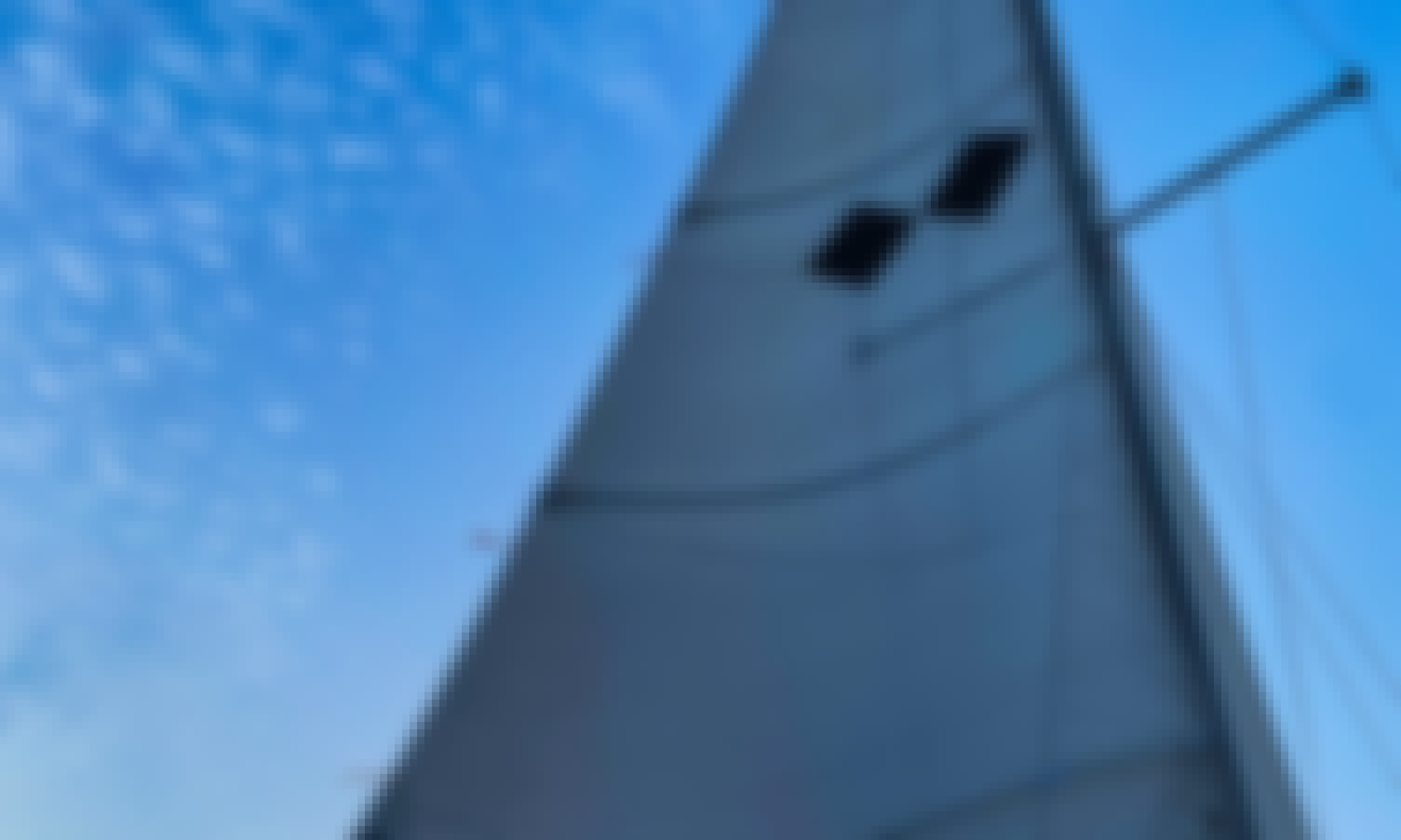 """25' Catalina Classic Pocket Cruiser """"Double Diamond"""" Sailing Yacht Charter with Captain Mike in Providence, Rhode Island"""