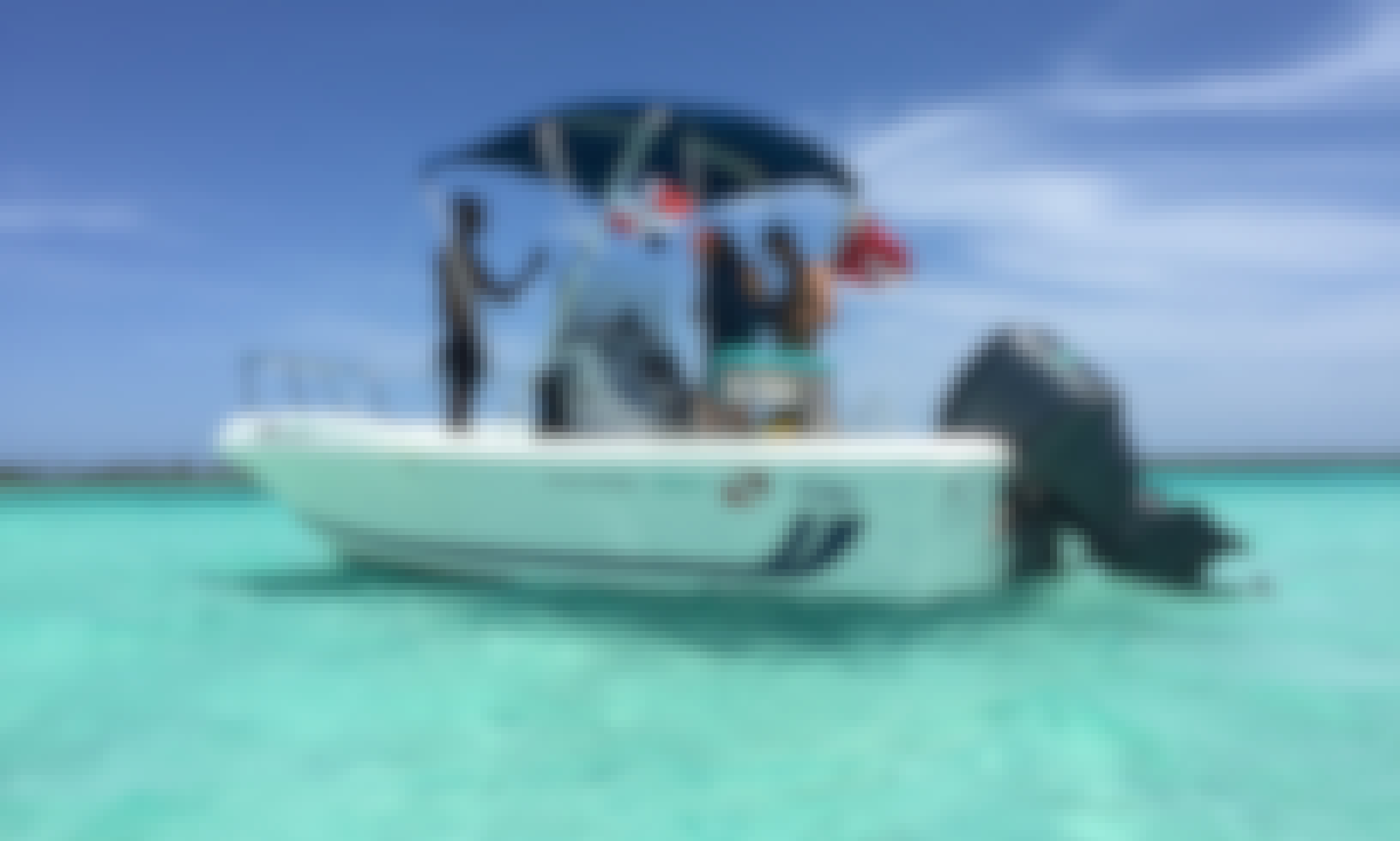 Scuba Diving boat trip in Bayahibe