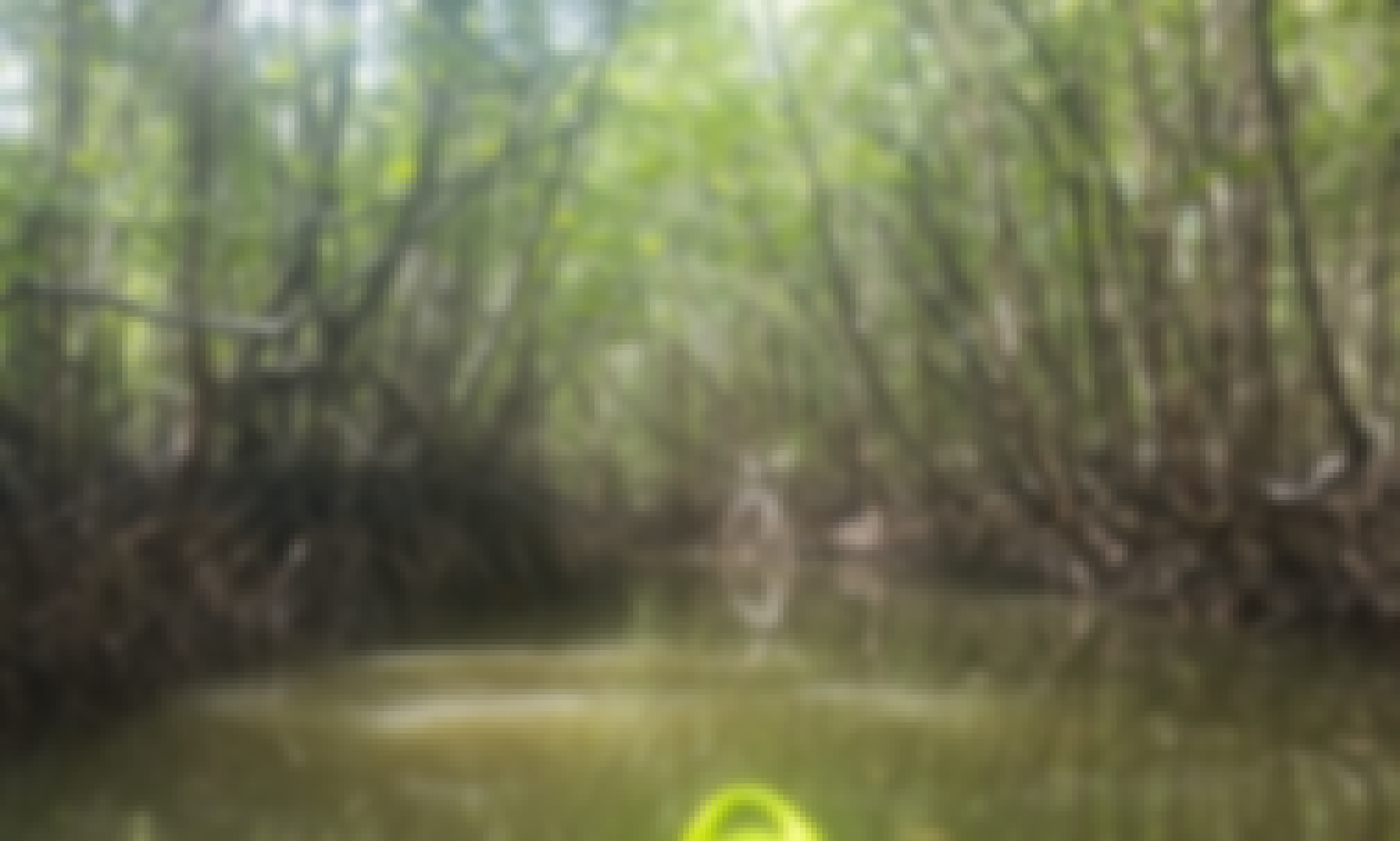 Kayaks/Paddleboards for Sea, Mangrove and Rivers in Ban Nam Kem, Bang Lut area