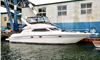 53' Luxury SeaRay for Charters in Lake Union & Lake WA  -  BEST DEAL FOR A YACHT OF ITS SIZE!