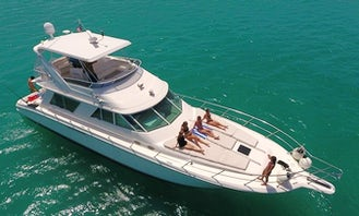 Charter this Amazing 55ft Sea Ray up to 15 People / MIN 6 HOURS