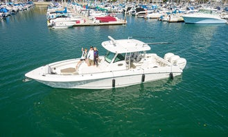 Charter 35ft Boston Whaler perfect for 6 people in Newport Beach