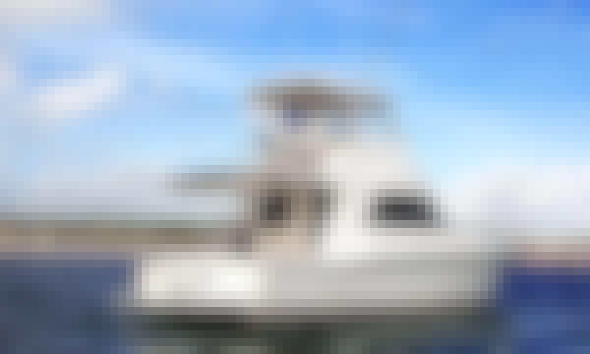 Private Fishing Charter on 37' Sportfishing Yacht in Punta Cana, La Altagracia