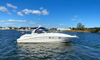 Charter 41' Searay Sport Yacht in the Great South Bay, Fire Island  for Day Trips