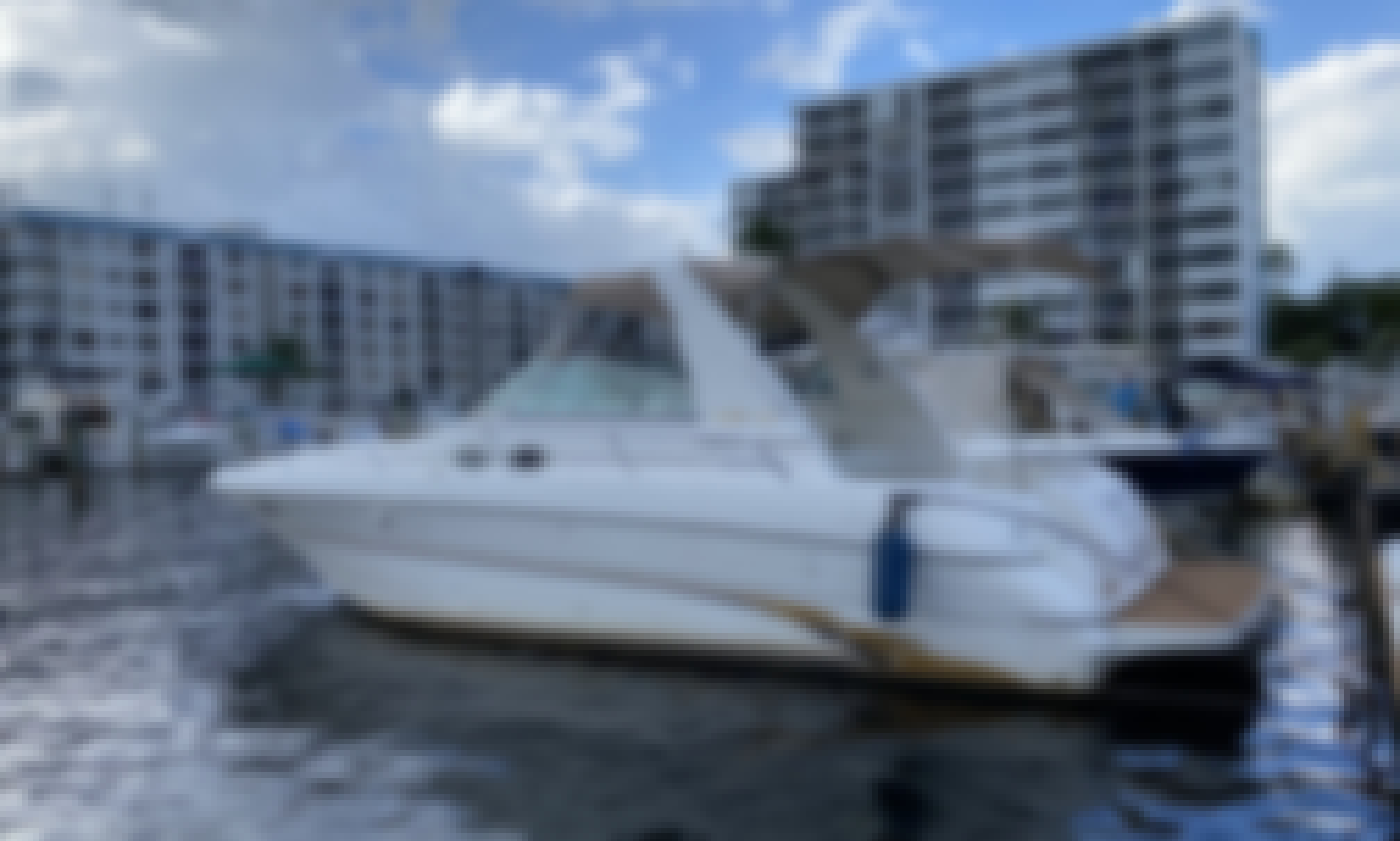 Awesome Sea Ray Sundancer 34' For A Memorable Cruise in Miami Beach