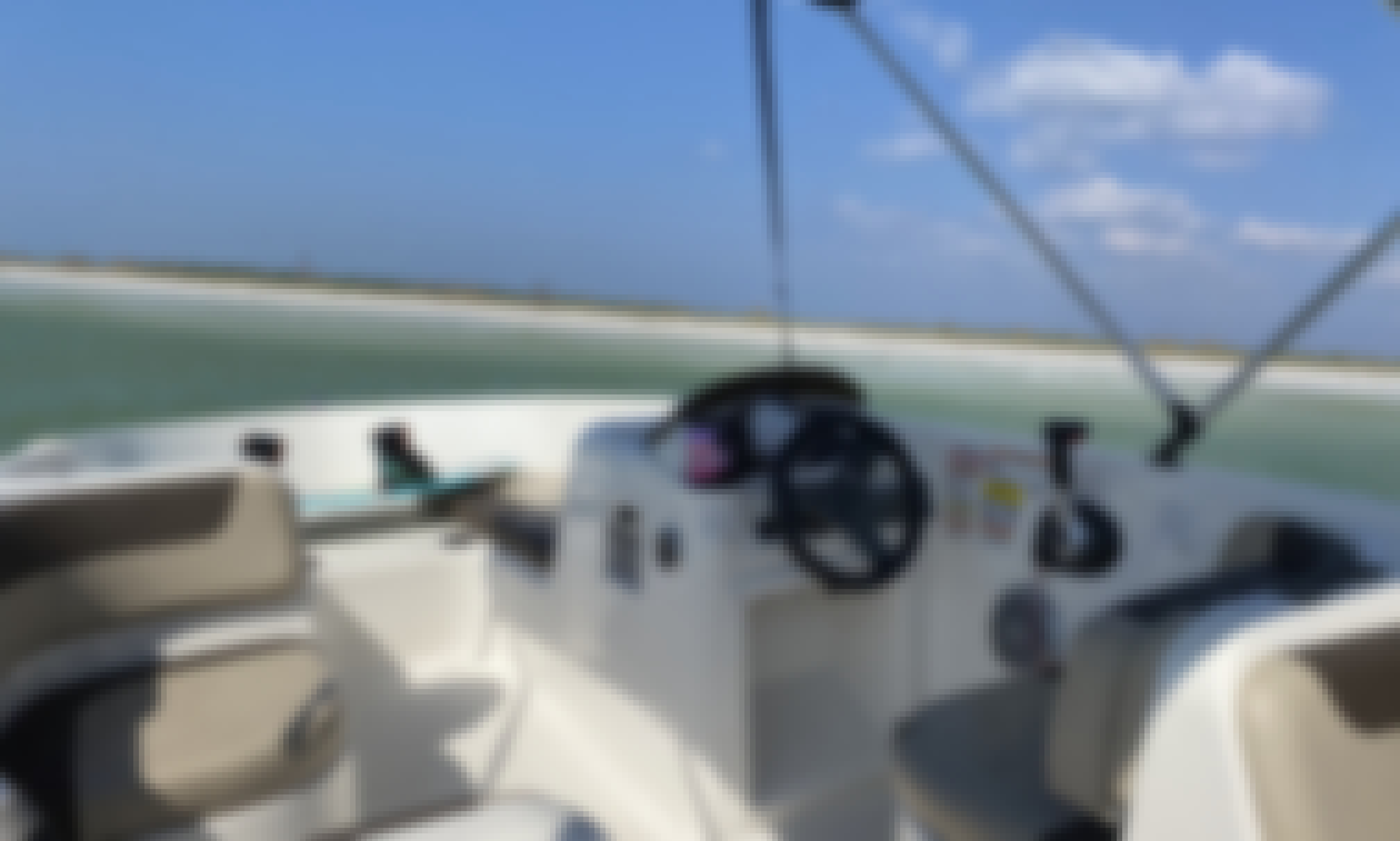 NEW FAST AND COMFORTABLE Bayliner Deck Boat UP TO 9 PEOPLE!