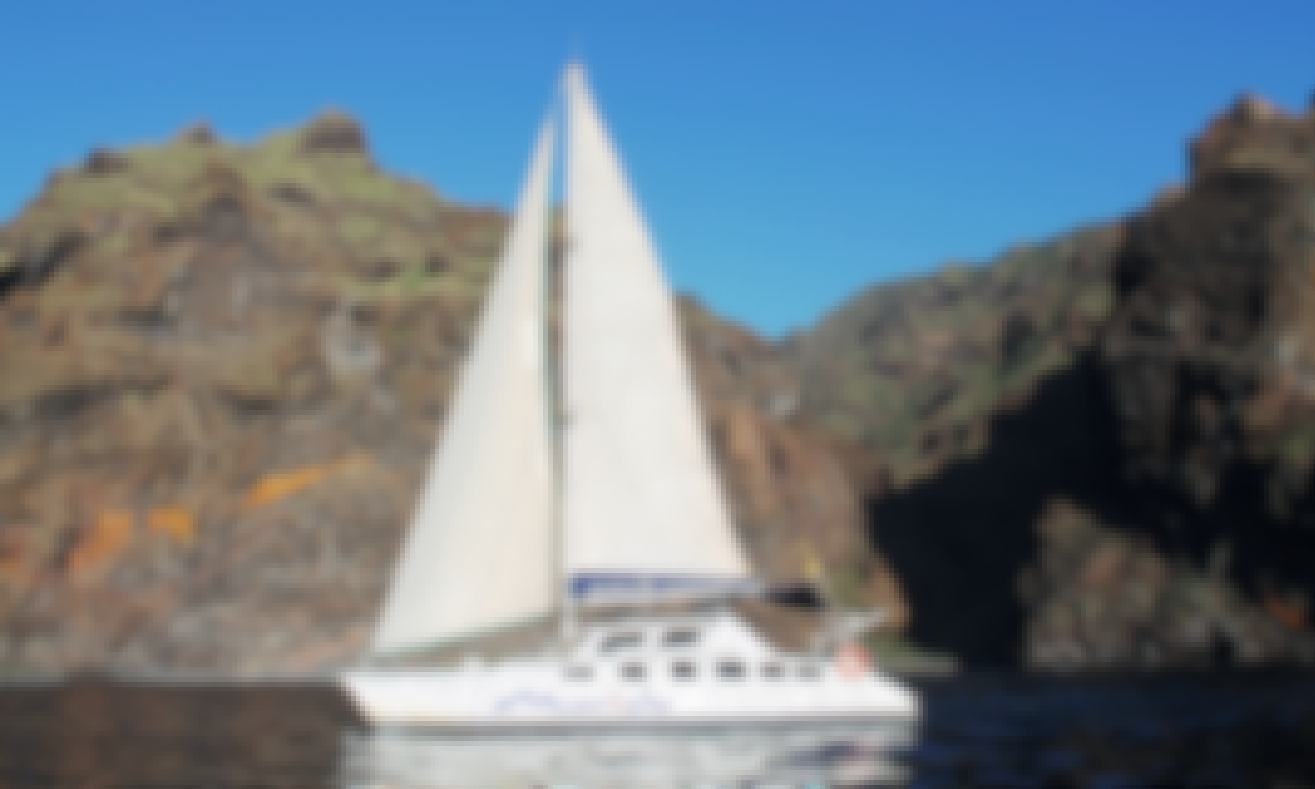 Marine Life Tour in Canary Islands!