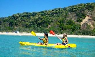 Dolphin View Kayaking Tours and Kayak Rental in Noosa, Queensland
