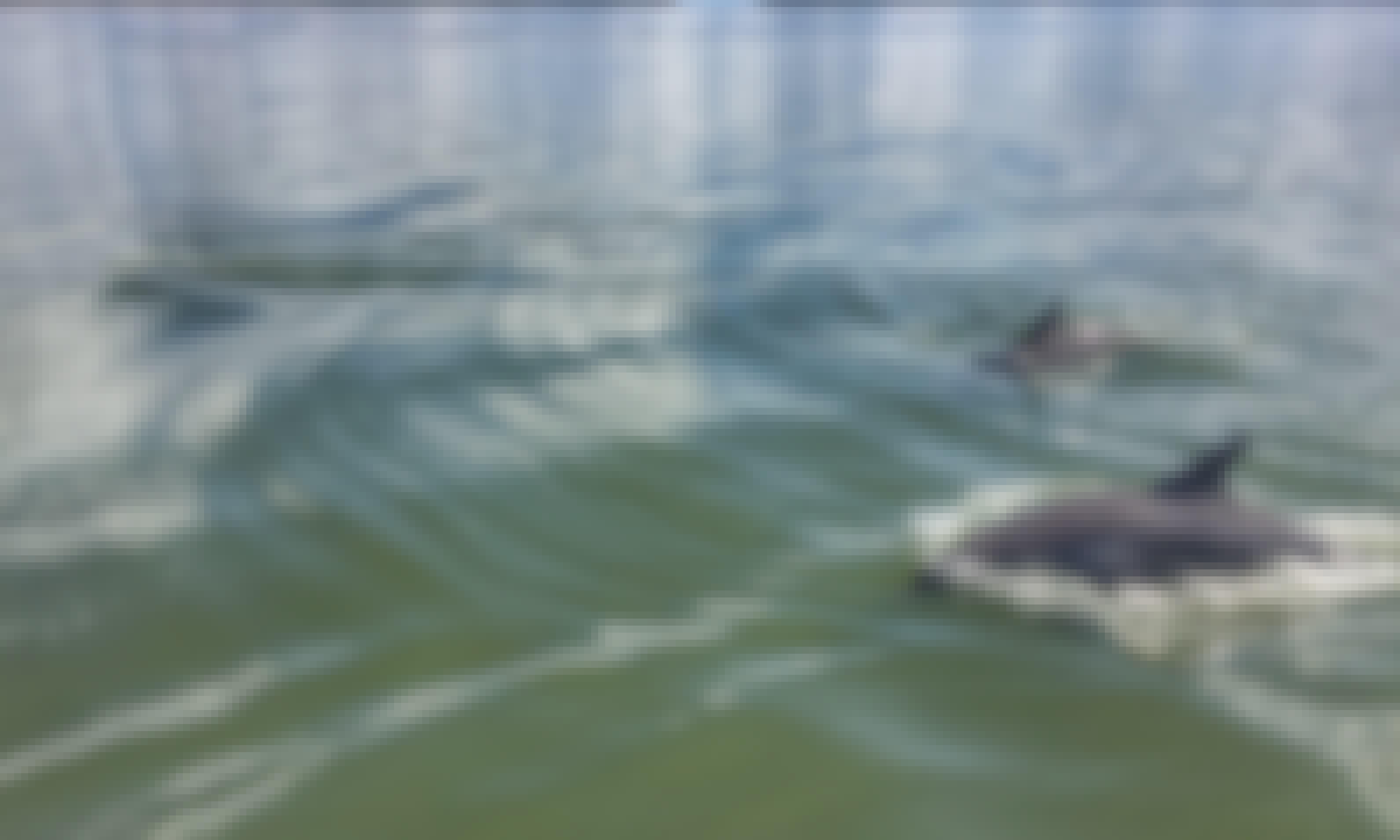 Relaxing Dolphin Tour Around Hilton Head Island!!