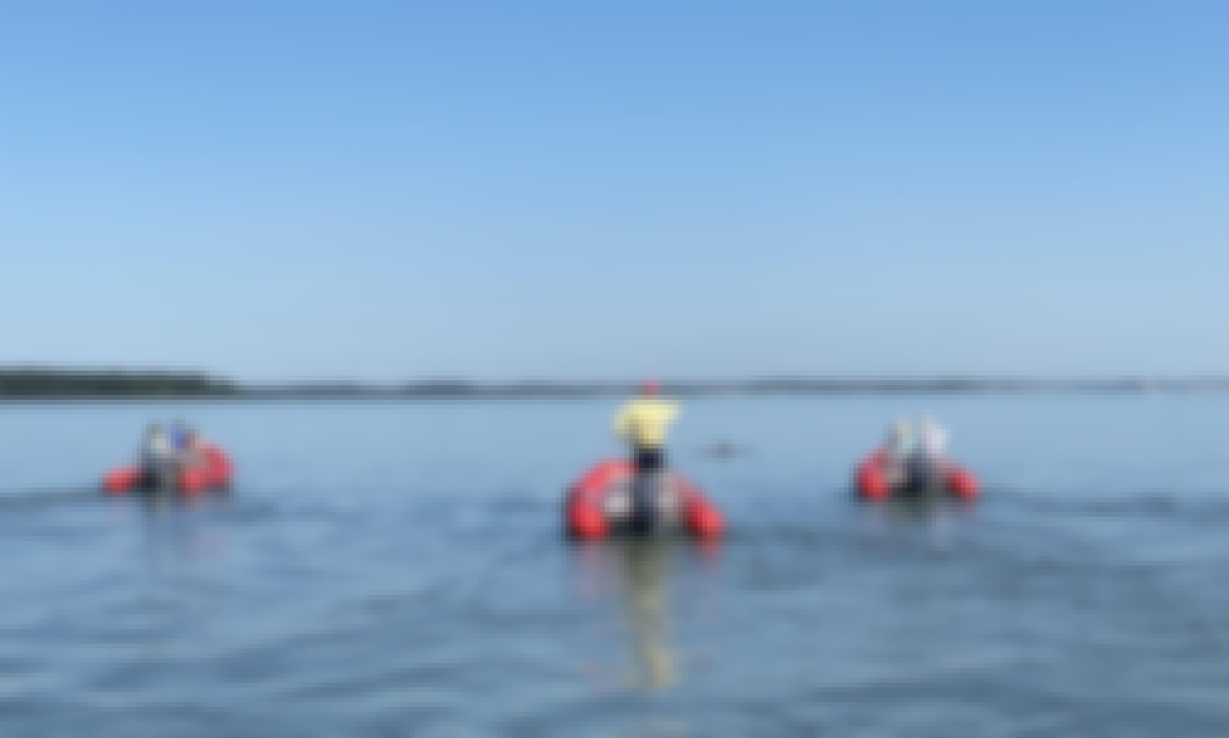 Zodiac Orange Mini Boat Dolphin Tour! Follow the Guide to Scenic Locations!