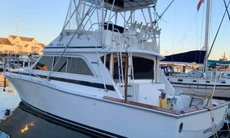 Fishing Charter on 38' Dawson Sportfish Yacht in Norfolk, Virginia