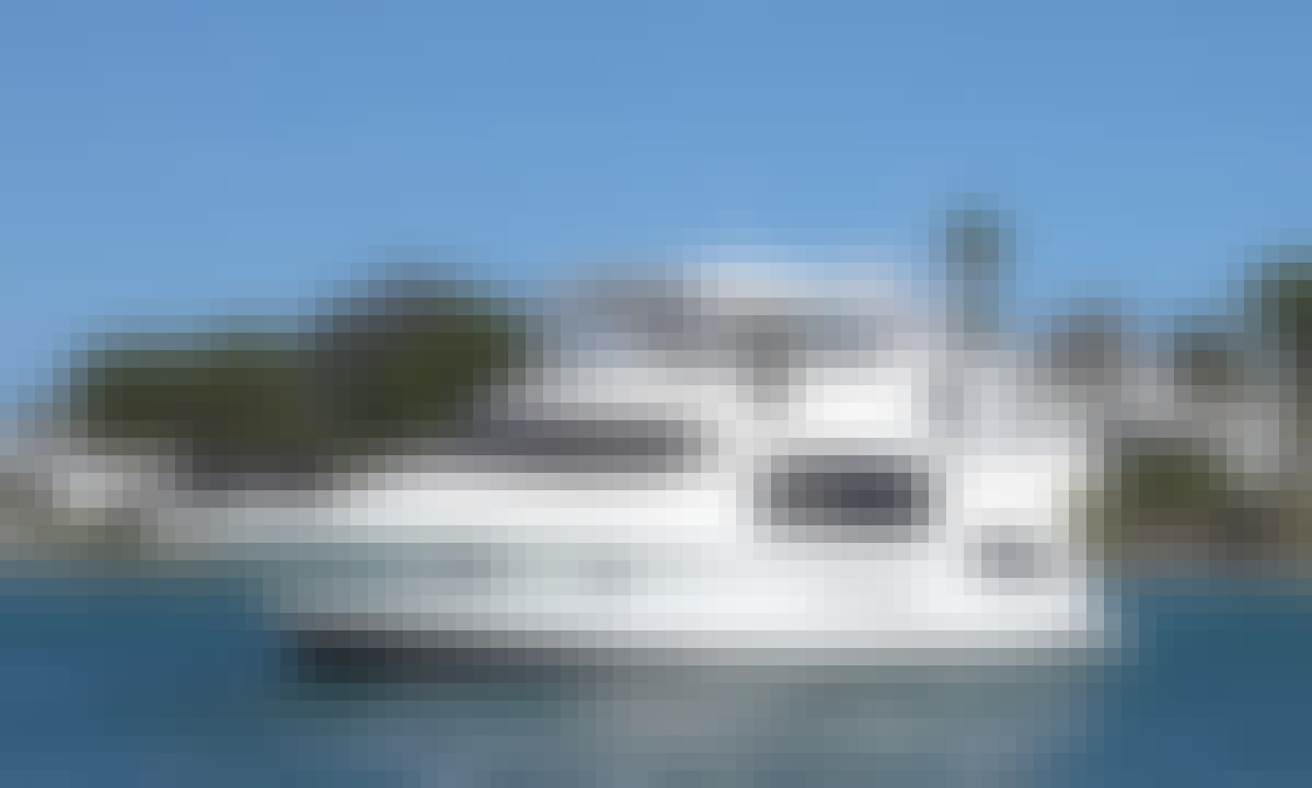 Silverton 392 Harbor Cruises in Beautiful Newport Beach