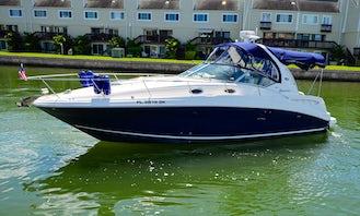 Sea Ray Sundancer 35' Enjoy a trip on our luxury Miami yacht!