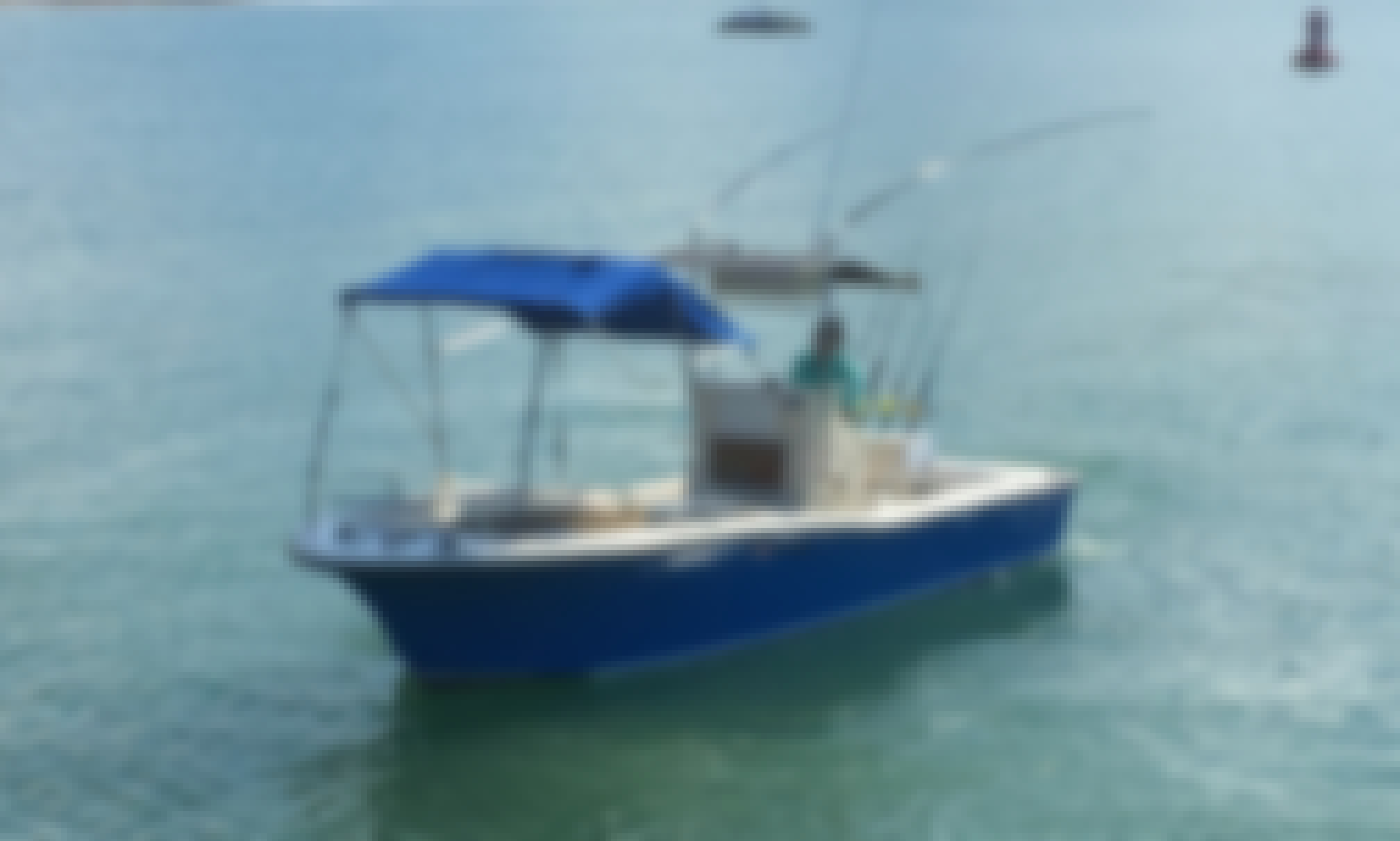 "Fishing Charter on Nautique 28"" in Puntarenas Province, Costa Rica"