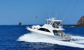 Sport Fishing Tours in Provincia de Guanacaste - All In Ocean Yacht 48ft