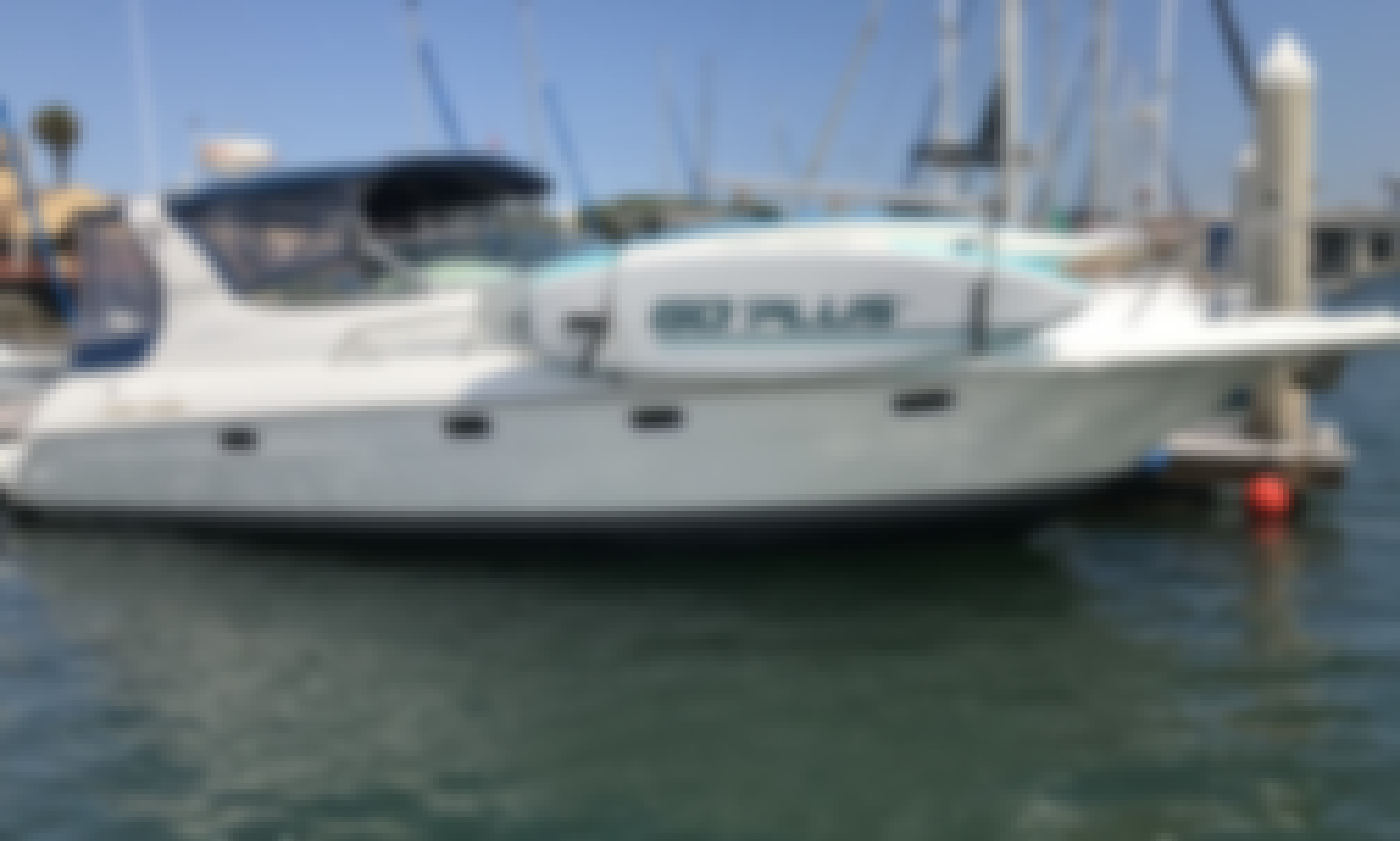 Cruise the Bay with USCG Licensed Captain Ken