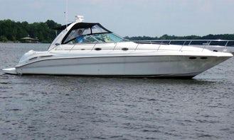 46' Searay Express Cruiser in Dania Beach, Florida!