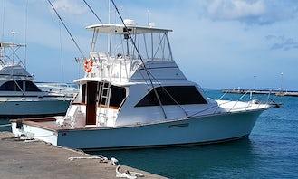 The Best Deep Sea Fishing Adventure Aboard Tropic King in Aruba