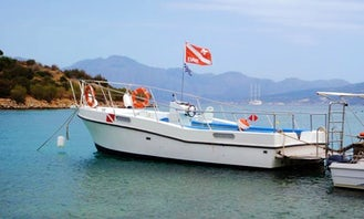 Boat Diving Trips & PADI Courses in Lasithi, Greece