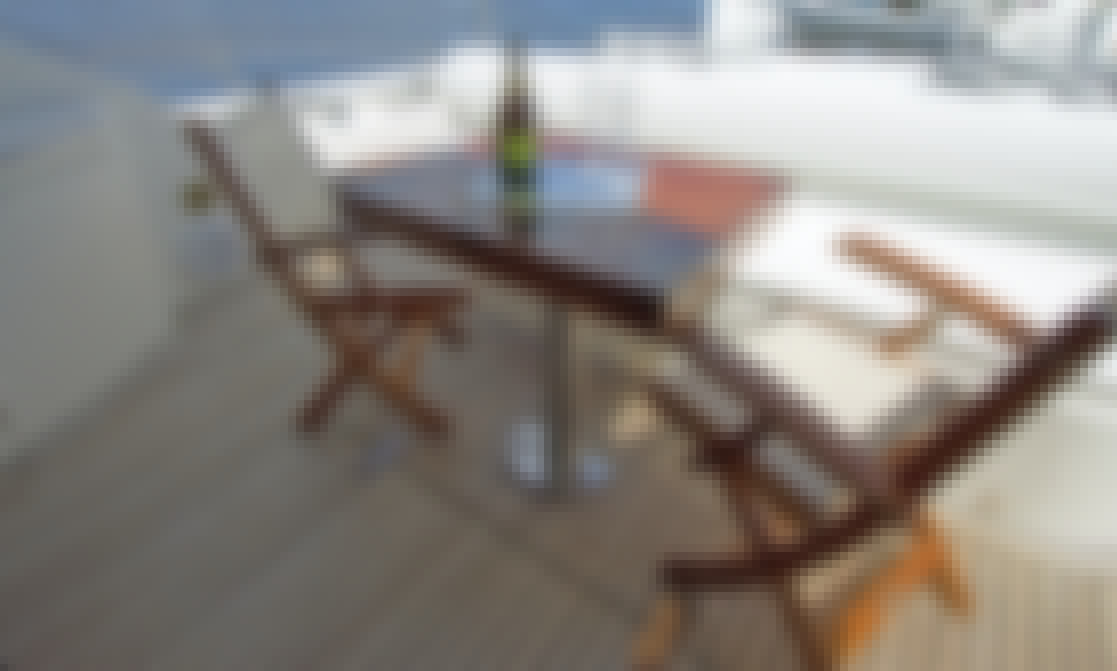Luxury UNIESSE 70' Yacht Experience in Miami Beach