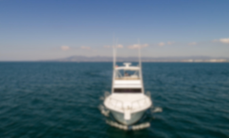 Viking Fishing 44' Boat in Nuevo Vallarta