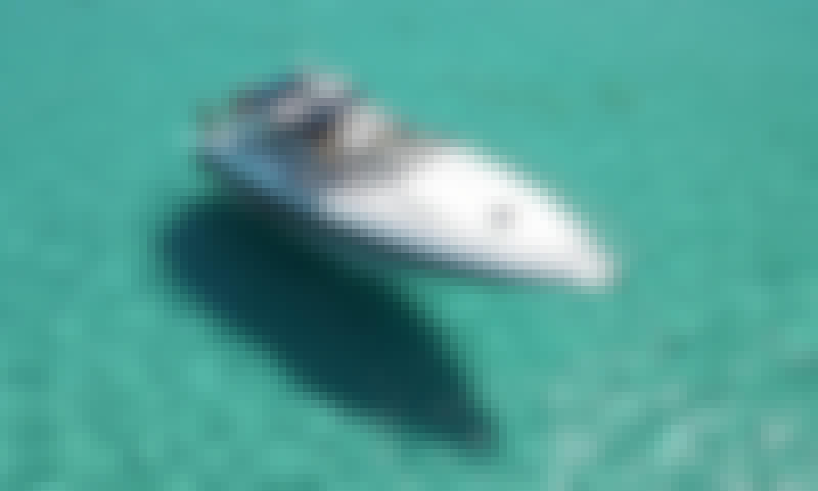 Absolute 45ft M/Y ALEXMAR in Marina Ibiza.