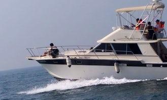 31' Fishing Charter for 7 People in Dubai, United Arab Emirates!