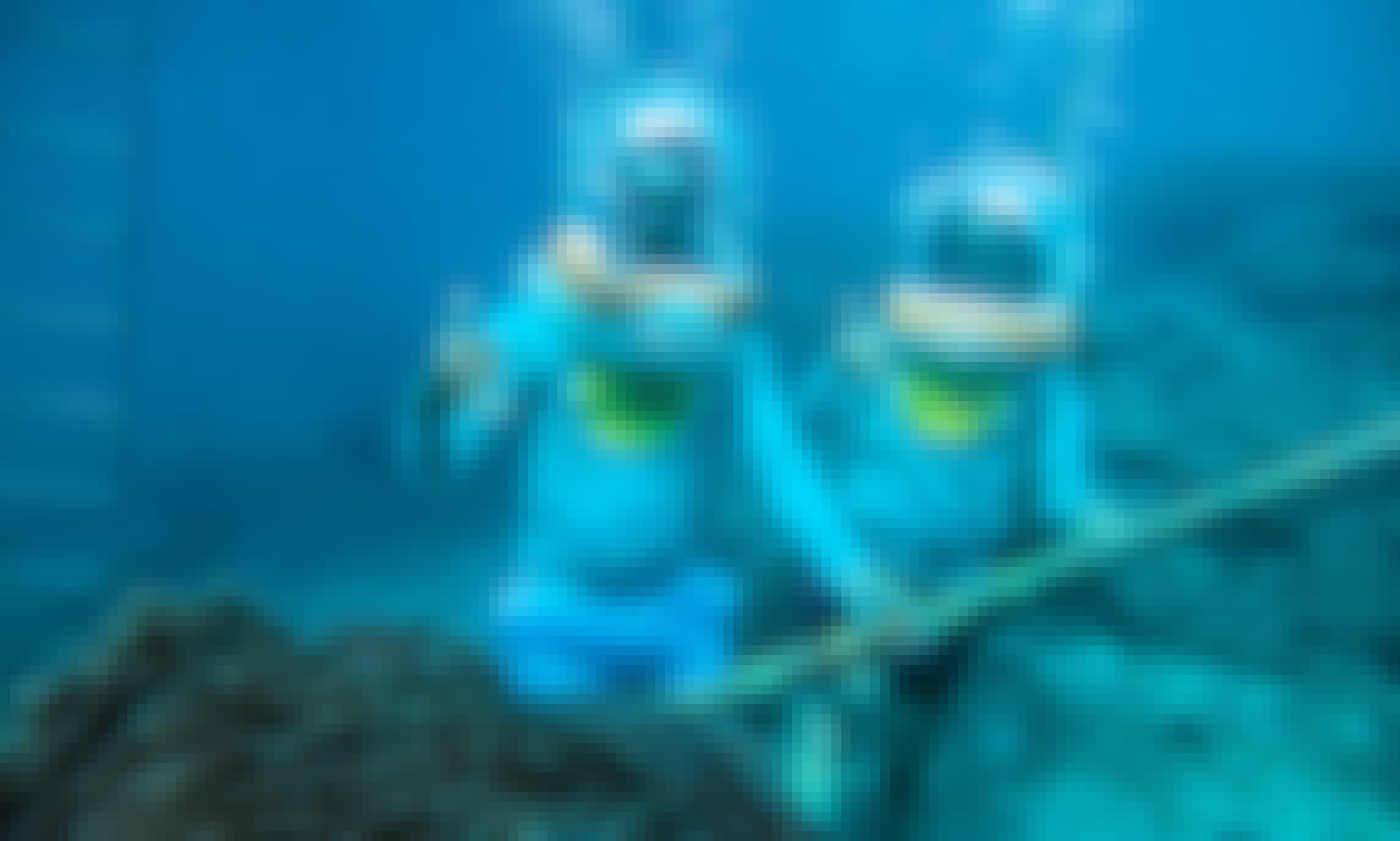 Sea Walker Adventure in Bali