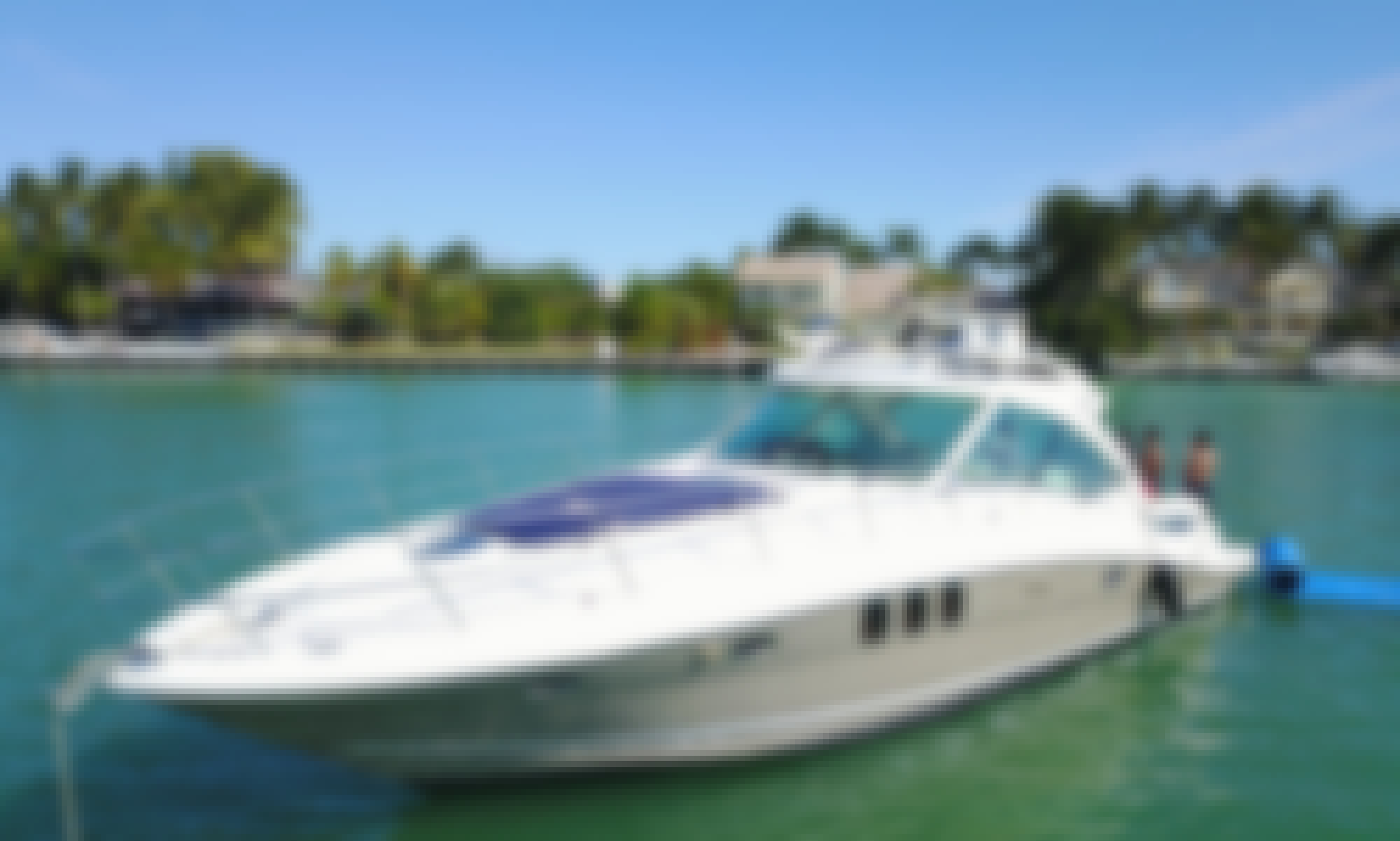 Amazing 50 foot Sea Ray Sundancer Motor Yacht $1,600 for 4hrs rental up to 12 guests AS Low AS $ 333 per hr - water toys: water carpet, Paddle board, floating noodles, snorkeling goggles! Well maintained yacht!