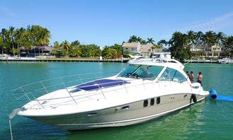 Amazing 50' Sea Ray Sundancer Motor Yacht - water toys: water carpet, Paddle board, floating noodles, snorkeling goggles! Well maintained yacht!
