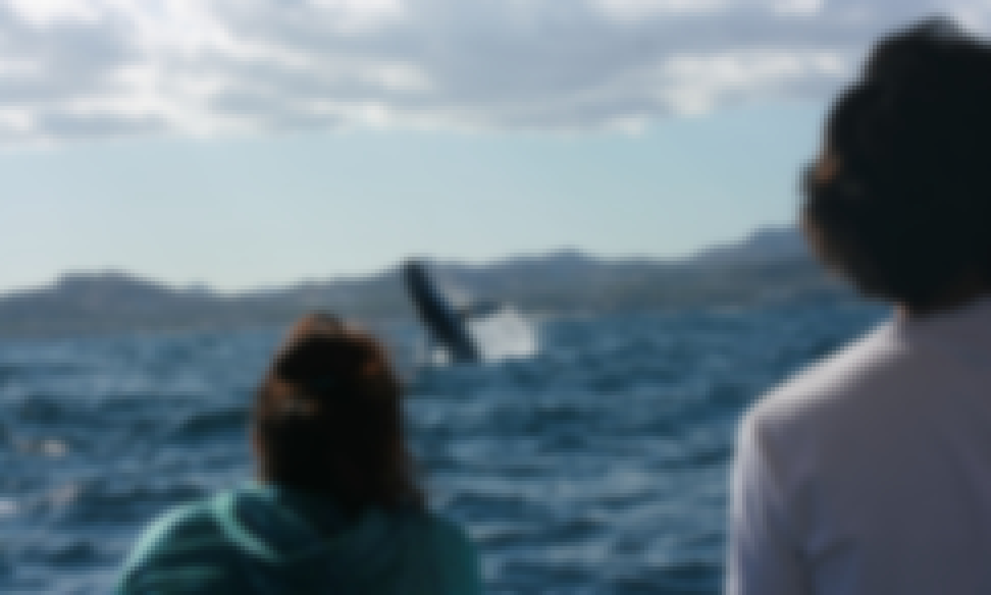Whale Watching Group Tour in San Jose del Cabo