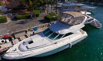 42 ft Yacht rental Riviera Maya Sea Ray tour to Cozumel