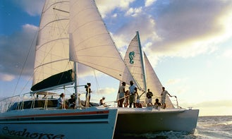 Party Catamaran up to 60 px
