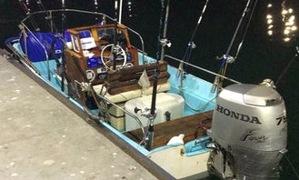 Boston Whaler 17' Guided fishing tours in San Diego!