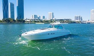 Spacious 54' Sea Ray Sundancer Motor Yacht in Downtown Miami/Miami