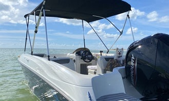 Drive The AWESOME Bayliner Deck Boat St. Petersburg, Clearwater and Tampa! (Weekday Specials!!)