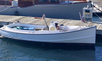 1973 Classic Pineapple Express 20' Picnic Boat