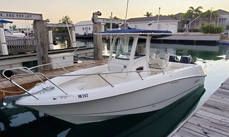 Rent 25ft Boston Whaler Powerboat in Jolly Harbour