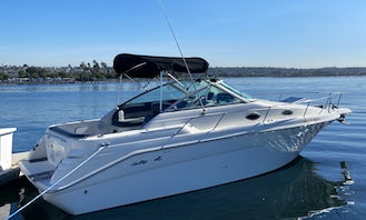 Sea Ray for Rent in San Diego, California