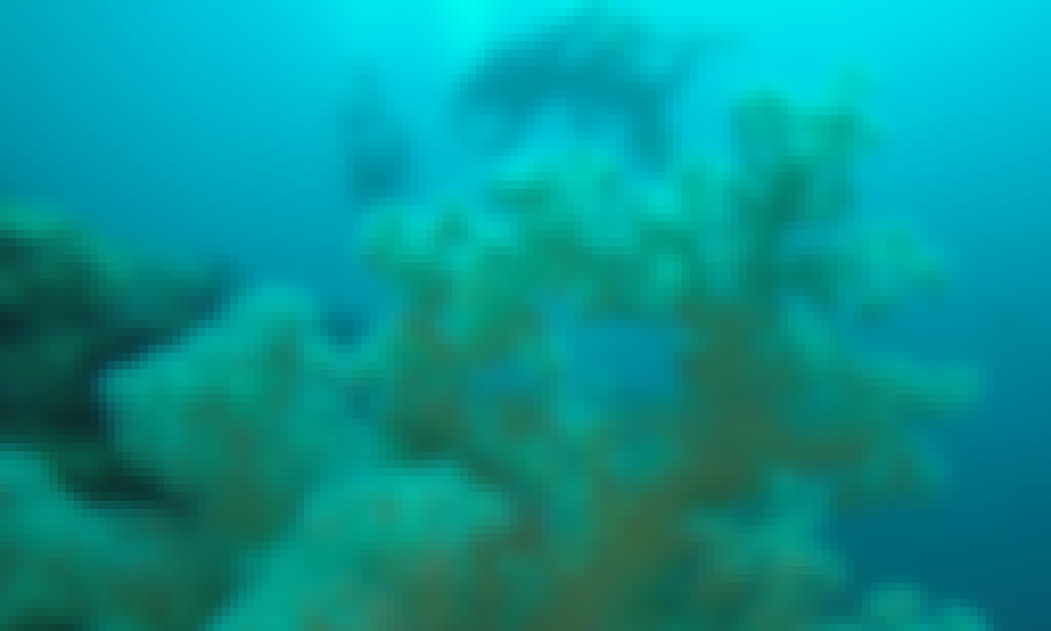 5 Fun dives Tulamben - Amed area