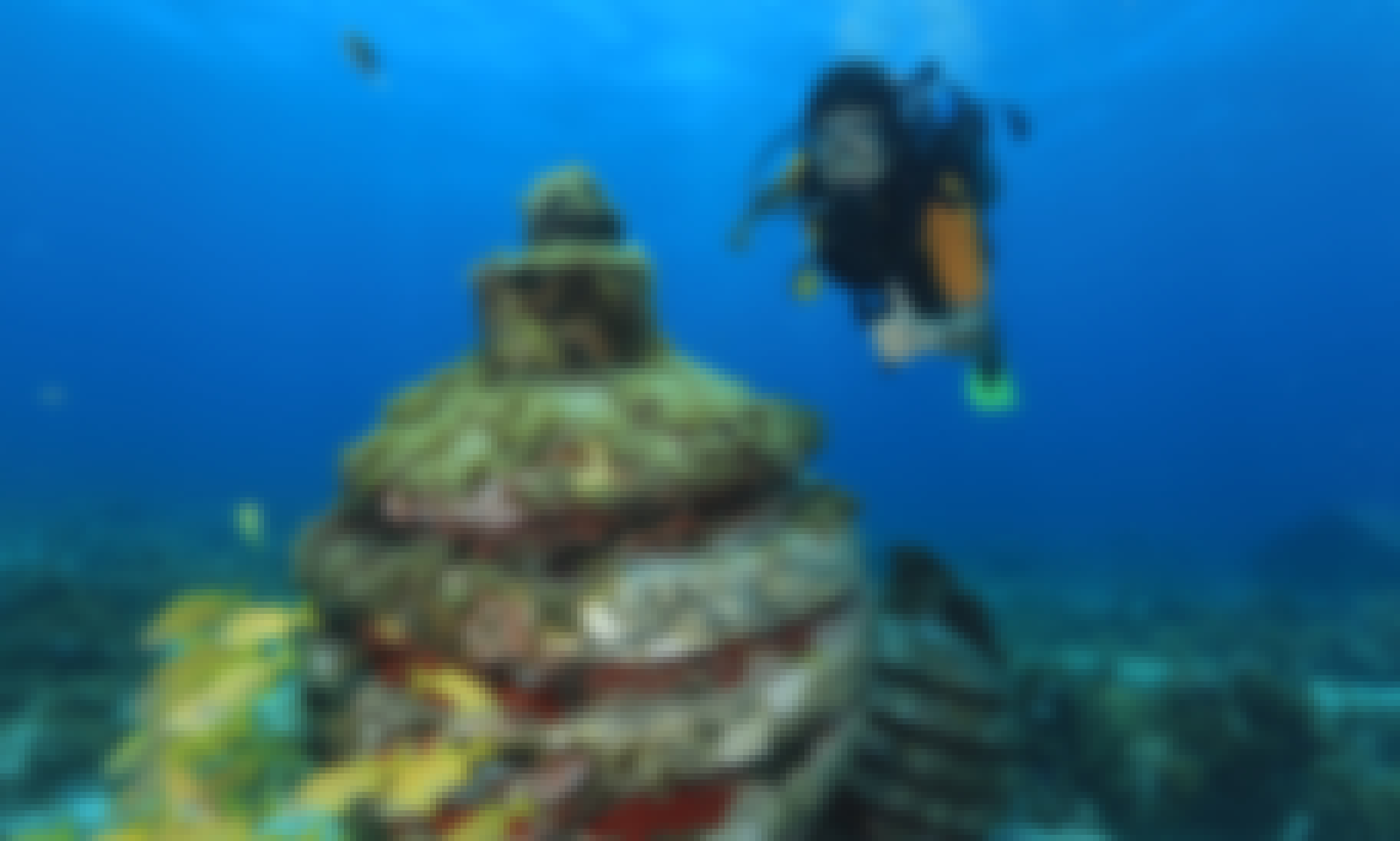 Scuba Diving MUSA Underwater Museum for certified divers in Cancun