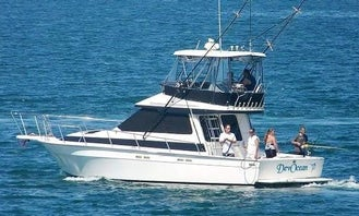 Fishing Tour Motor Yacht in Puerto Peñasco