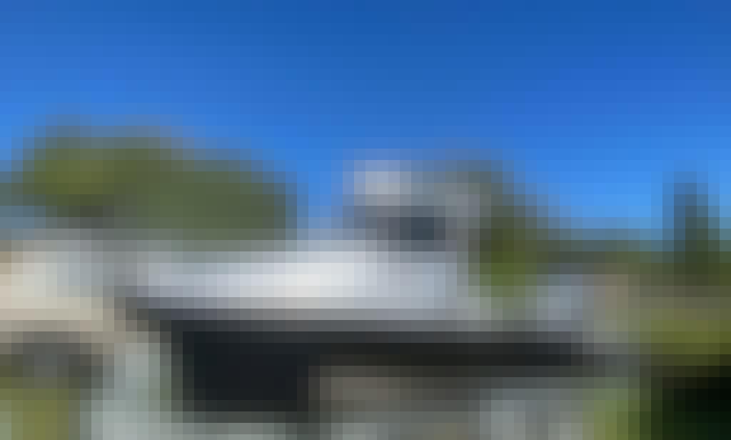 23' Surtees Gamfisher Charter in Westhaven, Auckland