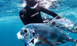 Spearfishing & Freediving Lessons in Fajardo