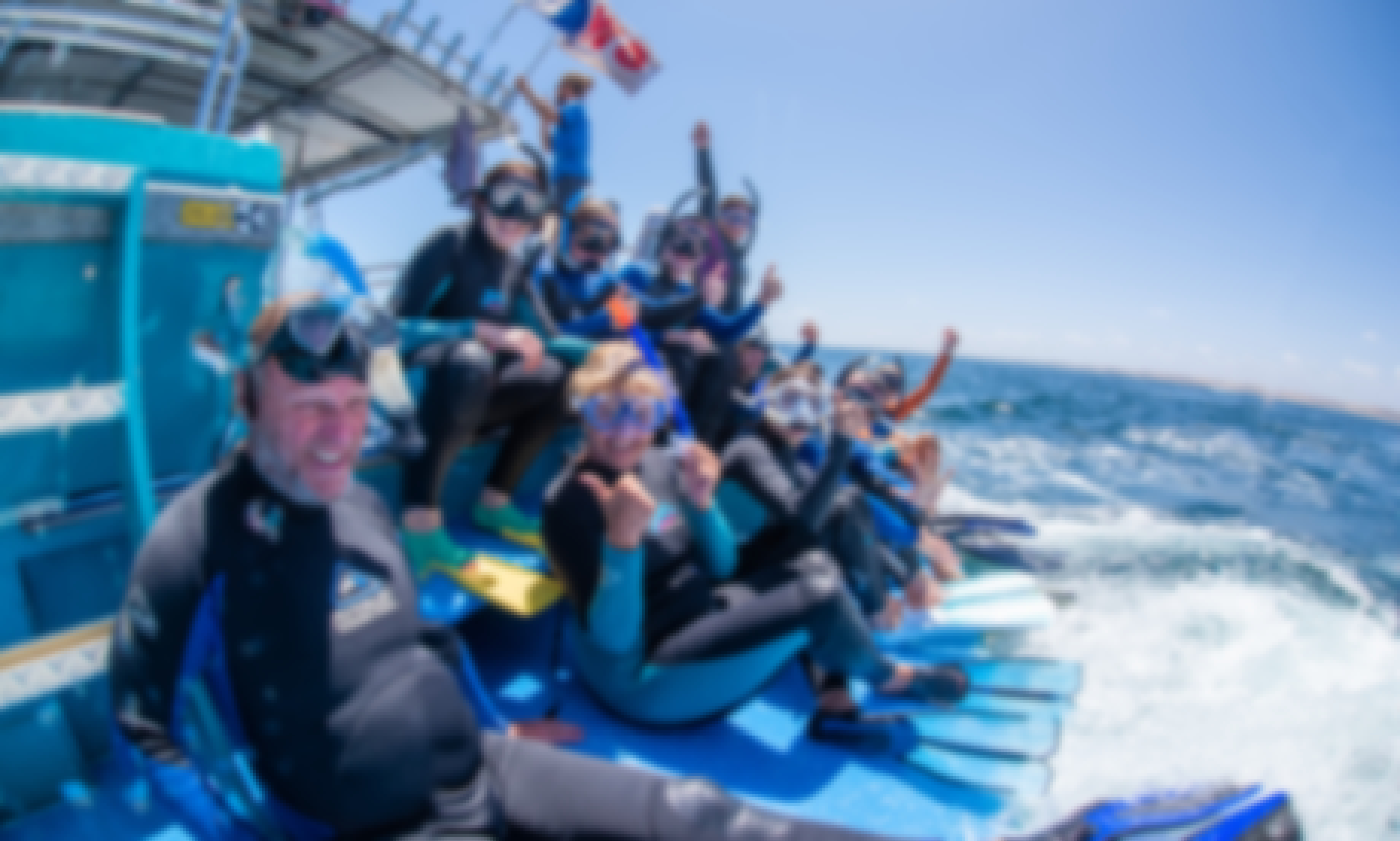 Private Snorkel Charter - swim with Whale Sharks, Humpback Whales, Mantas, Turtles