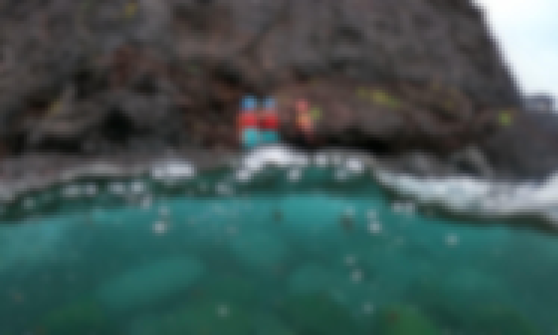 Coasteering in Açores/São Miguel - Caloura