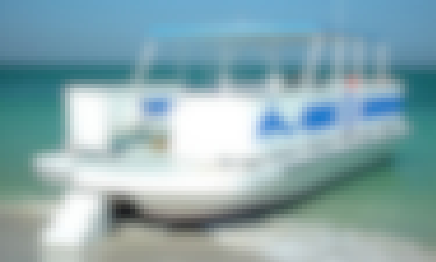 """Private 4 Hour Excursions 32' Pontoon Boat """"Island Hopper"""" in Tampa Bay"""