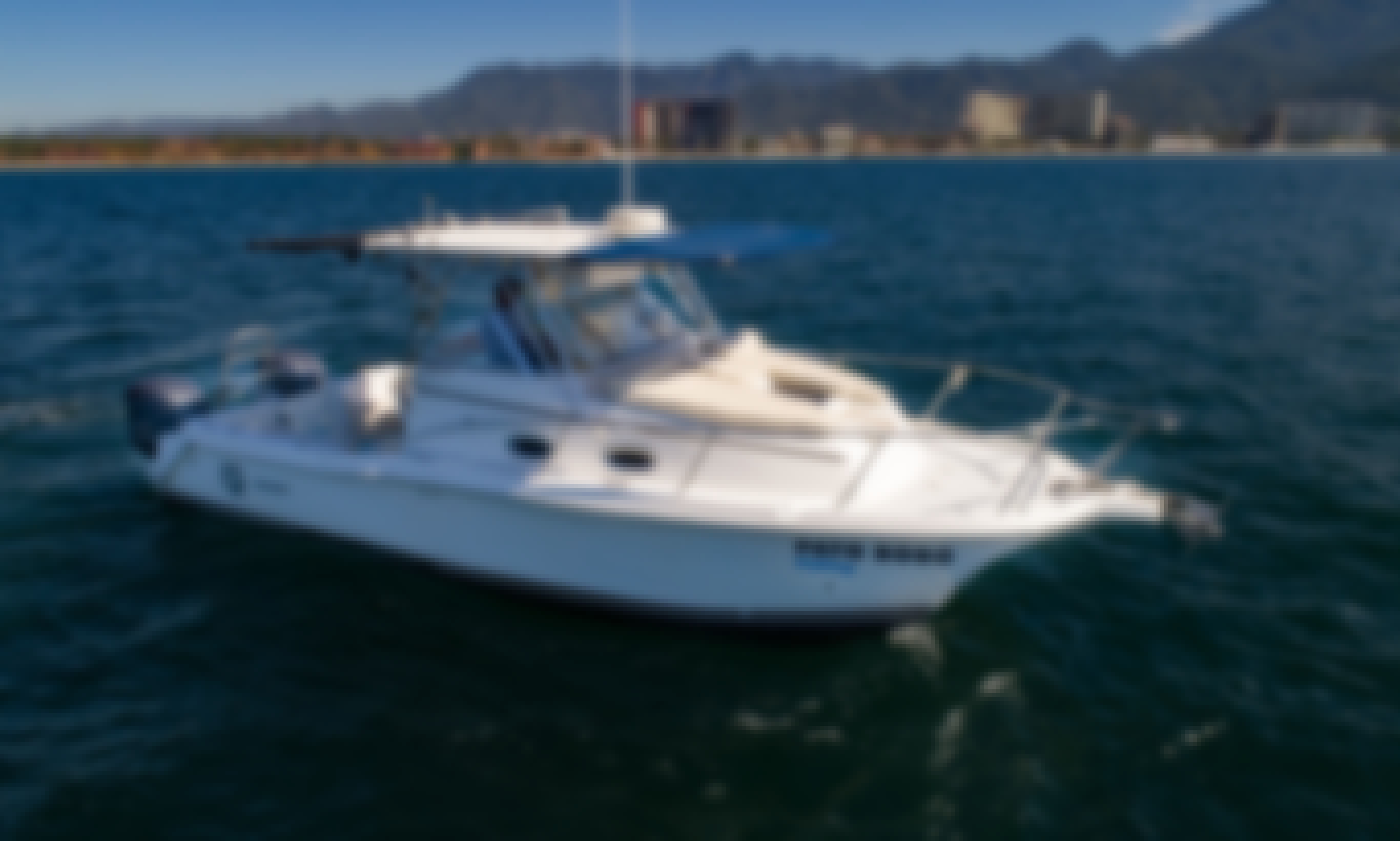 Sport Kat 29' in Punta Mita (All inclusive)